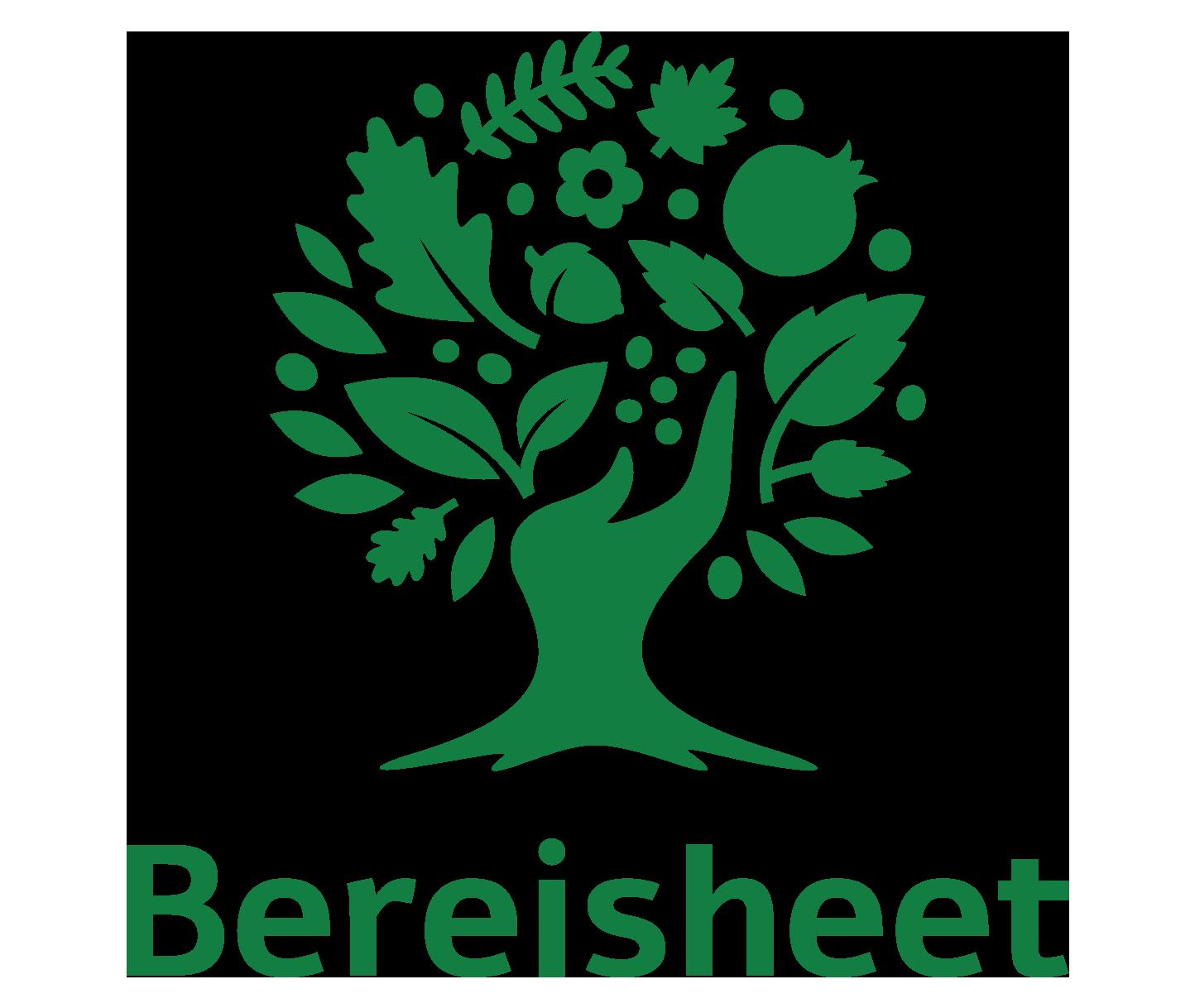 Omri Yaniv   Bereisheet
